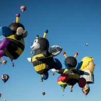 Balloon Fiesta 23